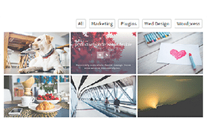 How to Create Portfolio WordPress Plugin With Responsive Filterable Categories Without Coding